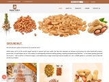 ground nuts and peanuts | exporter of peanuts | indian peanuts