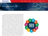 What is Meant by SEO? describe SEO