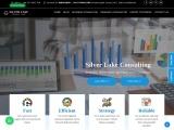 Silver Lake Consulting – Data Analysis