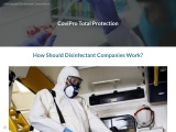 How Should Disinfectant Companies Work?