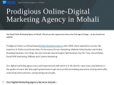Digital Marketing Agency in Mohali