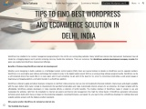 Tips to Find best WordPress and Ecommerce solution in Delhi India
