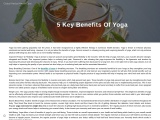Yoga Exercise – Yoga For Stress Relief