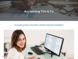 Accounting Service Providers and their Important Strategies!