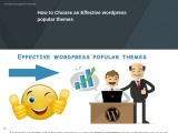 How to Choose an Effective wordpress popular themes
