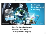 Tips For How to Choose The Best Software Development Company