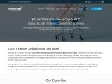 Best e-commerce web designers in California | SynergyTop