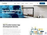 Custom Application Development company in Delhi