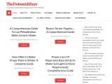 Best Commercial Dehumidifiers For Garage Basements