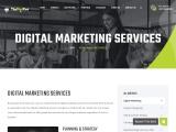 Best Digital Marketing Services In USA & UK – The Digicat