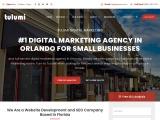 Tulumi Digital Marketing Agency