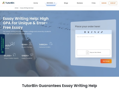 What are Essay Writing Services