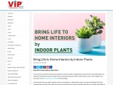 Bring Life to Home Interiors by Indoor Plants