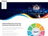 SAP Consulting Services – SAP Cloud Services
