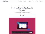 Does Malwarebytes Scan for Viruses | How to Scan for Viruses