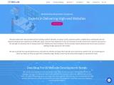 ウェブ開発会社   プロフェッショナルWeb開発   Website development company