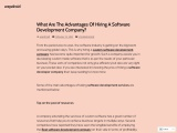 What Are The Advantages Of Hiring A Software Development Company?