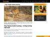Help Tadoba Safari booking    Tadoba Safari Packages