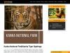 Kanha Tiger Sightings | Kanha National Park