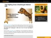 Bandhavgarh Safari Booking | Bandhavgarh Booking
