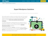 Professionals For WordPress Plugin Development | WP-Plugins