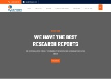 99-REPORTS |MARKET RESEARCH REPORT & STRATEGY CONSULTING