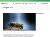 Wasps And Bees | Facts & Behaviour – A1 Pest Control Canberra
