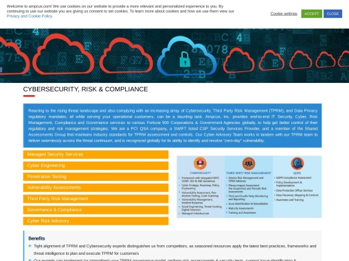 Cyber Security Services Risk Management Solutions   Ampcus Inc