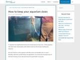 How to keep your aquarium clean – AquariumWorlds