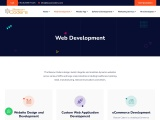 Best Web Development Services in India – Web Development Services