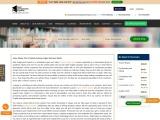 Online Custom Essay Services   Essay Writing Help
