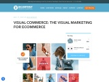 VISUAL COMMERCE: THE VISUAL MARKETING FOR ECOMMERCE