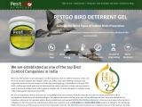 Best Pigeon Control Services in India – Bird Gel Spikes
