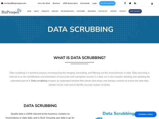 Data scrubbing services bizprospex