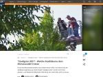 https://www.br.de/nachrichten/wissen/stadtgruen-2021-welche-stadtbaeume-dem-klimawandel-trotzen,RU1LYg3