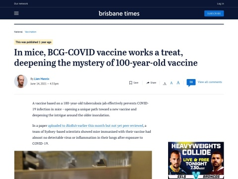 In mice, BCG-COVID vaccine works a treat, deepening the mystery of 100-year-old vaccine