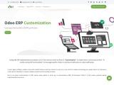 Odoo Customization And Odoo Customization Services – CaretIT