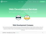 Hire the best Custom Web Design & Web Development Services Company