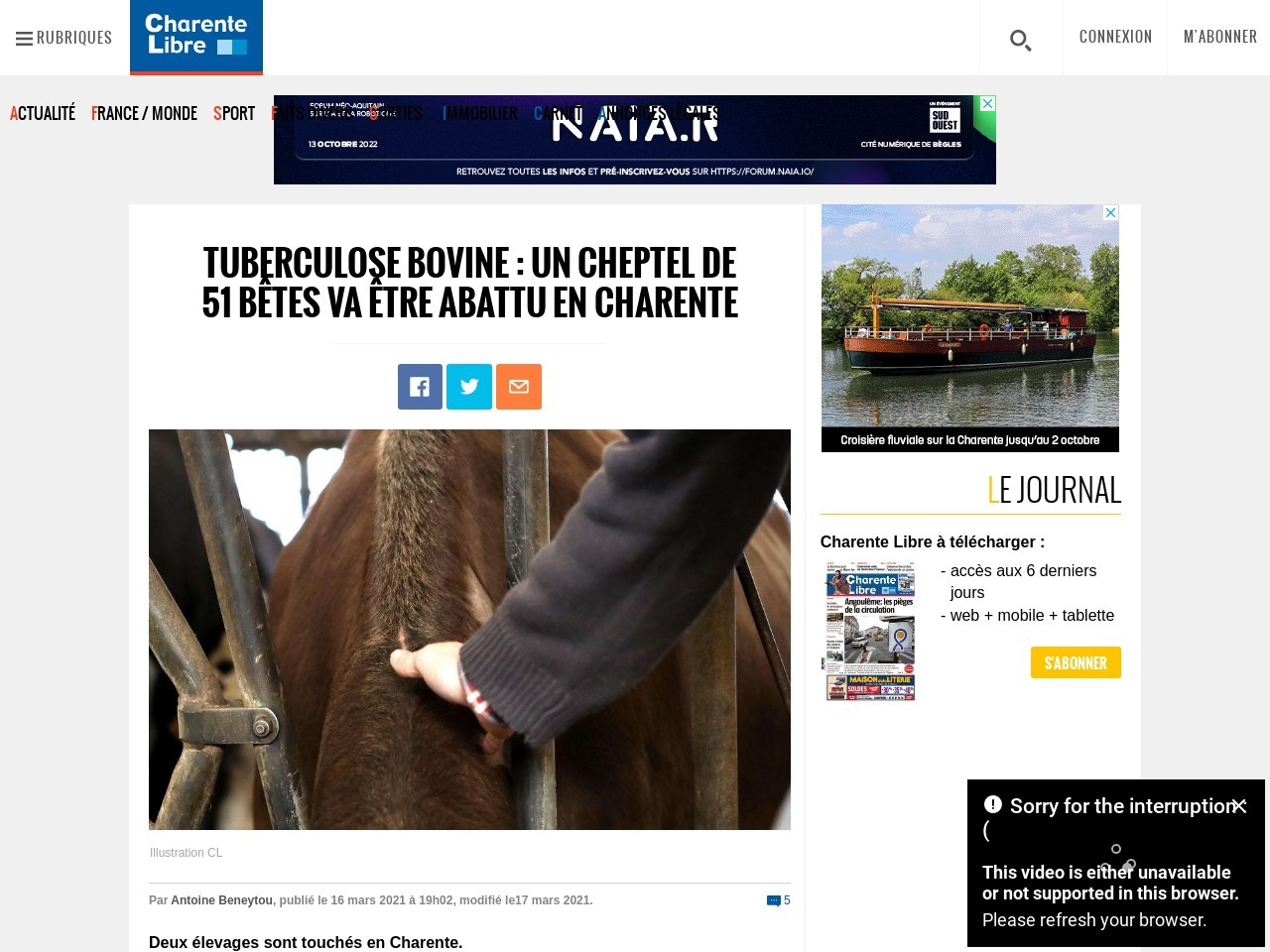 Tuberculose bovine: un cheptel de 51bêtes va être abattu en Charente