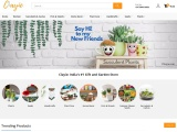 Online Flower Delivery | India's #1 Gift and Garden Store- Clayie