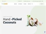 Coco Bharat | Husked, DeHusked, Copra Coconut Delhi B2B Suppliers