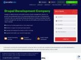 Drupal Web Development Company India | Drupal CMS Development