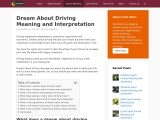 dream meaning driving | Dream about Driving