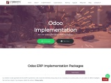 Odoo ERP Implementation Company