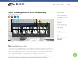 Digital Marketing in Dubai: Who What and Why