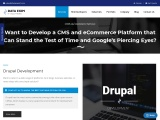 Custom E-Commerce Web Development | CMS Development Services