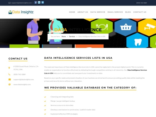Data Intelligence Services Lists in USA