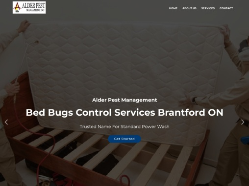 Bed Bugs Control Services Brantford ON