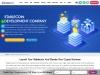 Stablecoin Development Company
