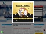 UI Development Online Training in Hyderabad